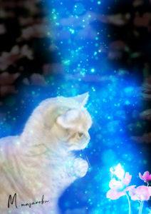 猫と花 DesignerM 宮本まさのぶ